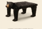 Living Forest Institute & The Only Animal:  Logging more than trees - Table