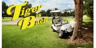SKY TV: Tiger is back
