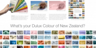 Dulux NZ: What's Your Dulux Colour of New Zealand
