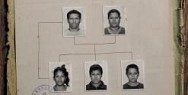 Amnesty International: Family Tree