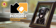 Pedigree Adoption Drive: The Child Replacement Programme