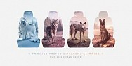 Nissan: climates - wolves