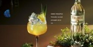 Finlandia Vodka: Kokos Pineapple