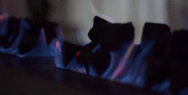Jemena Natural Gas: Fire Place